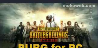 Pubg for PC (Playerunknown Battlegrounds)