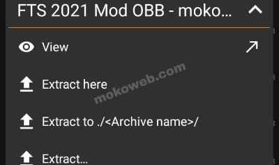 Extract obb file