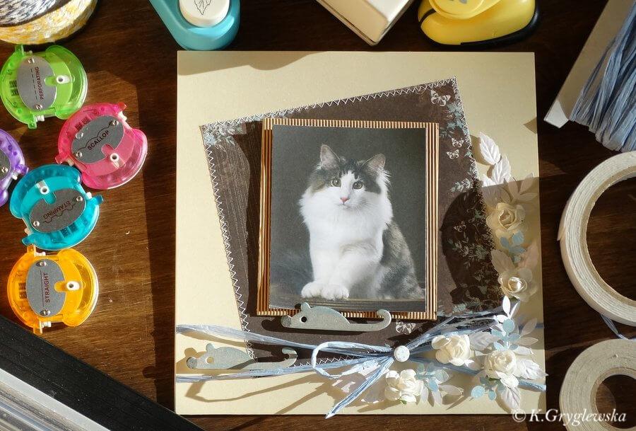 urodzinowa kartka z kotem