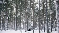 May in het woud