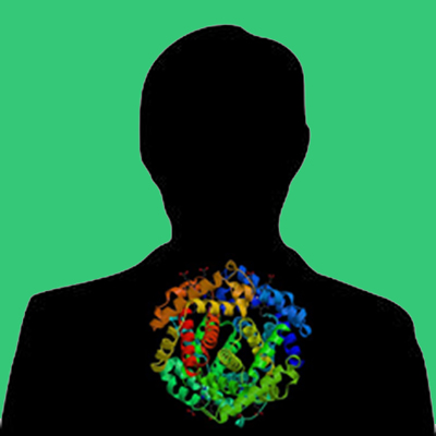 Human PAI -1 Cathepsin G specific mutant