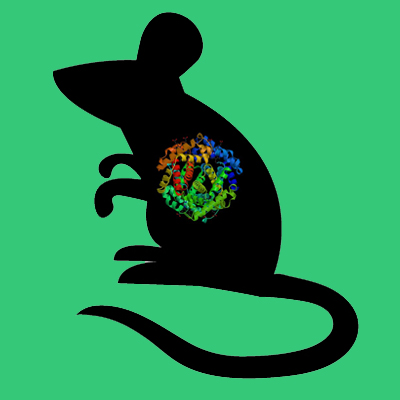 Mouse alpha 2 antiplasmin, Flag tag