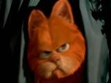 Рыжий кот Мурлыка