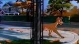 Disney Magic English - Faraway places