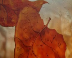 Осення мелодия - Осенний дождь