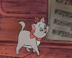Каждый хочет быть котом - текст песни
