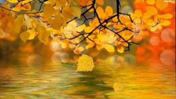 Осень - текст песни про осень