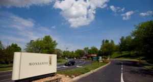 A Monsanto Co. logo stands on display outside the Monsanto Chesterfield Village facility in Chesterfield in this file photo.