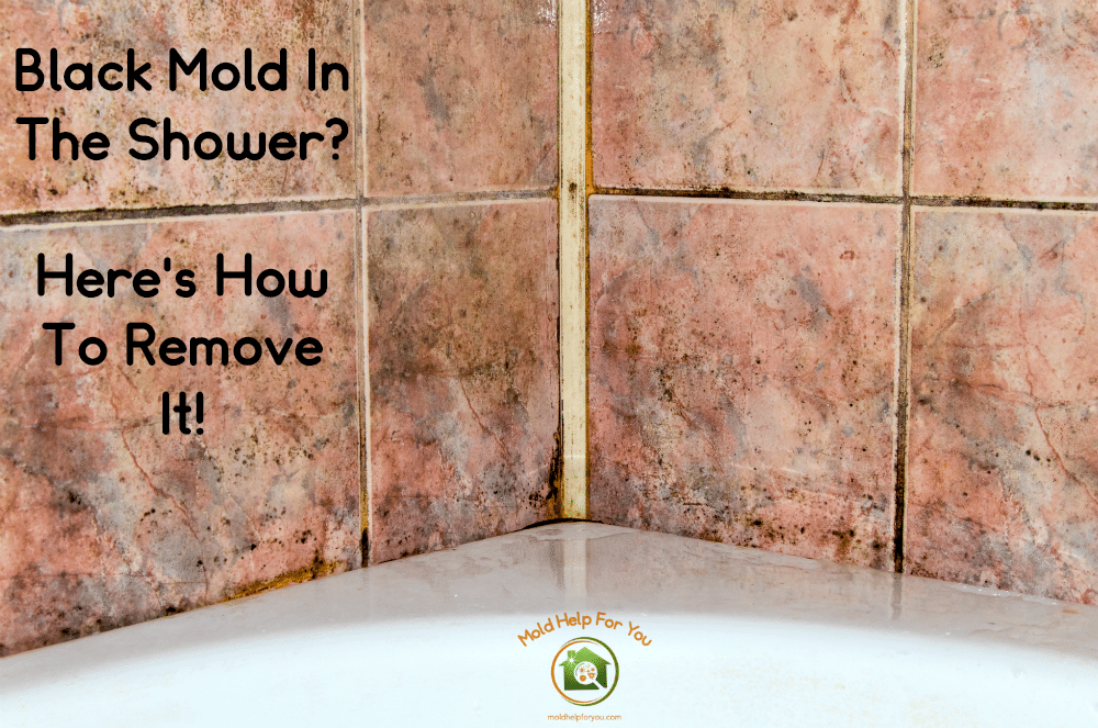black mold in the shower here s how to