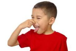 Molds Distinctive Smell
