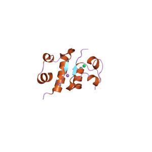 Human Insulin Antibody