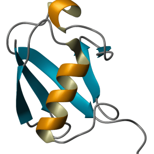Ubiquitin Aldehyde