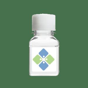 Guanidine Hydrochloride Solution 6M