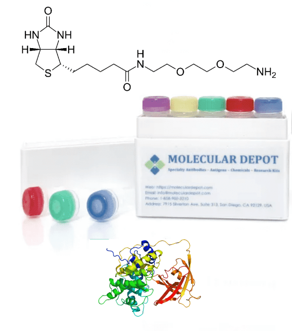 UltraFast Antibody and Protein Biotinylation Kit (microgram scale, 1 reaction)