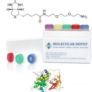 UltraFast Antibody Biotinylation Kit (ug scale, 1 reaction)