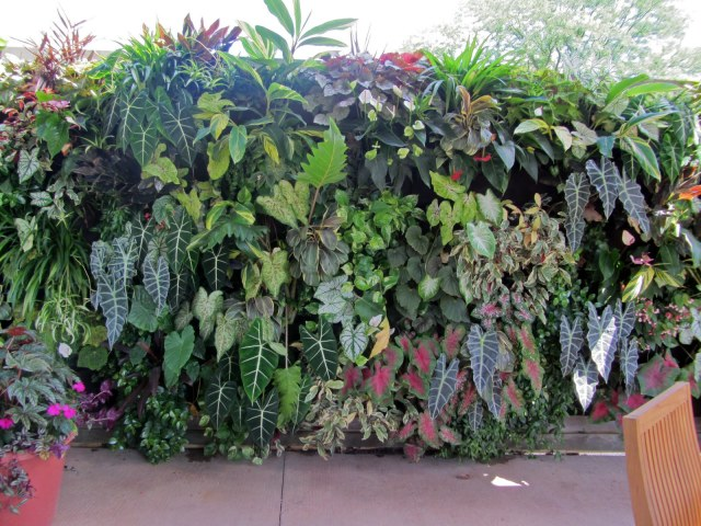 Living wall,outdoor-molecule design