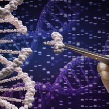 CRISPR 2.0 ile İnsan Genomunda Hassas Genetik Düzenleme Yapılabilecek