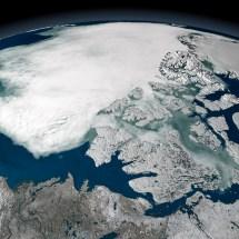 Neslihan Taş'ın Isınan İklimin Harekete Geçirdiği Permafrost (Donmuş Toprak) Mikroplarıyla Yaptığı Çalışmalar