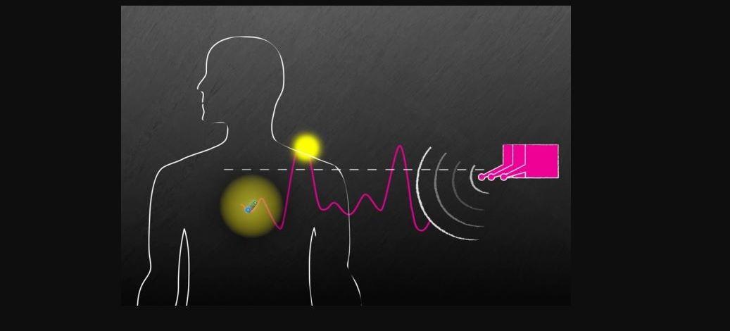 Kablosuz sistem, vücuttaki cihazları çalıştırabilir