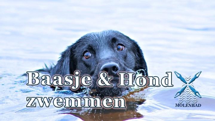 Baasje en hondzwemmen