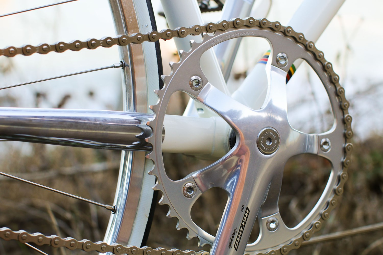 cinelli (23 of 73)