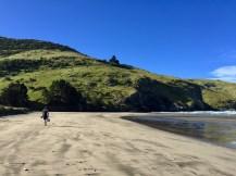 La Bons Bay, Banks Peninsula, NZ