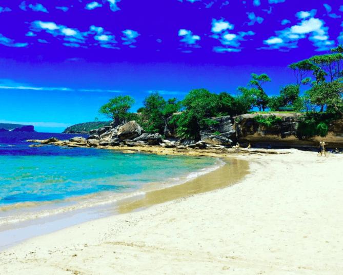 photo of Balmoral Beach