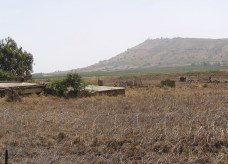 Minefield between Syria and Israel