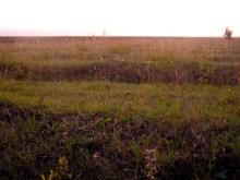 Fields outside Akalkalake
