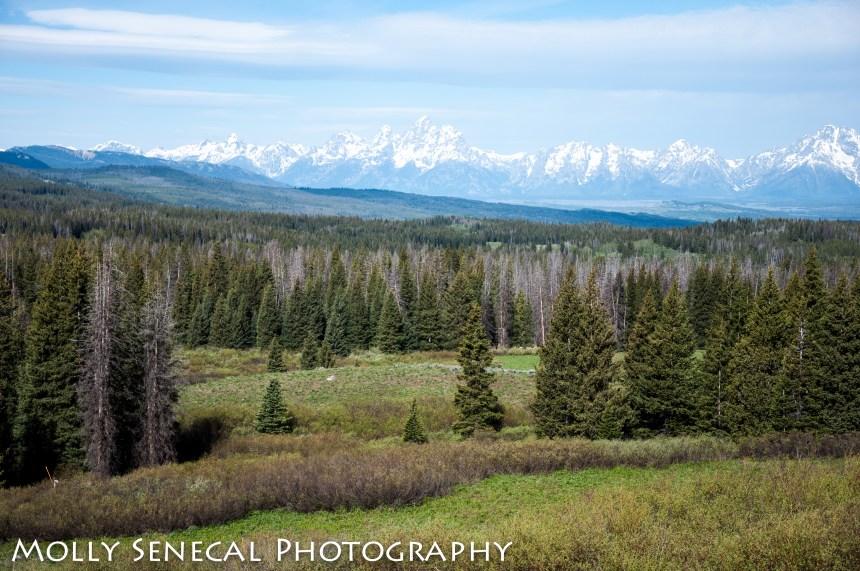 Wyoming2019_41
