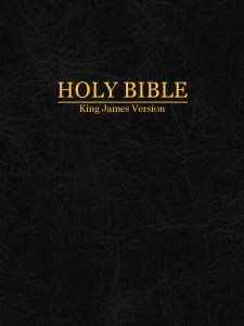 product - Holy Bible