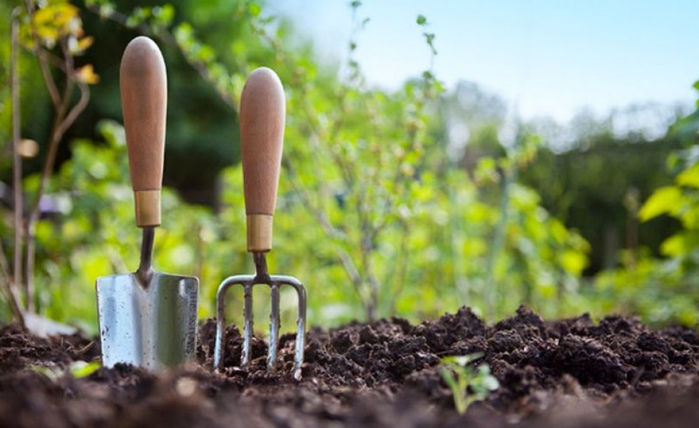 Country Living Class – Gardening