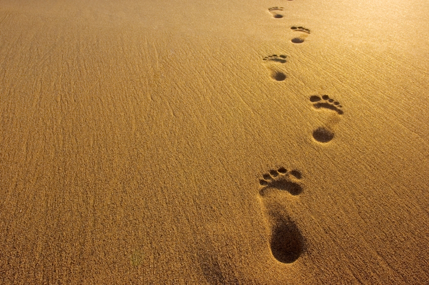Inspired Quote of the Day: Enoch Walked With God