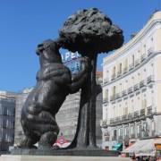 Медведь и земляничное дерево