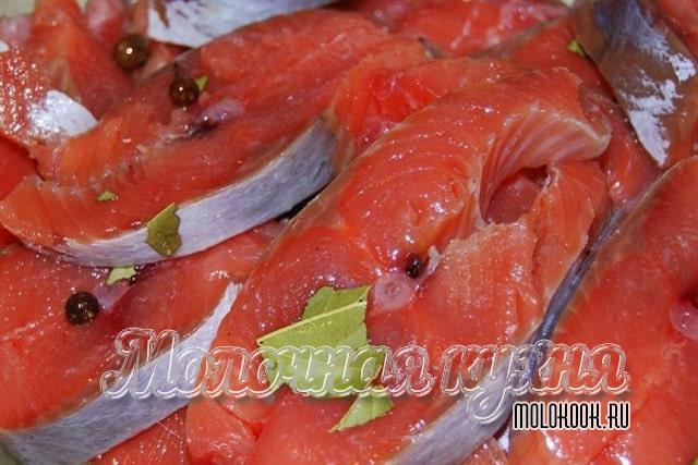 Қызғылт лосось