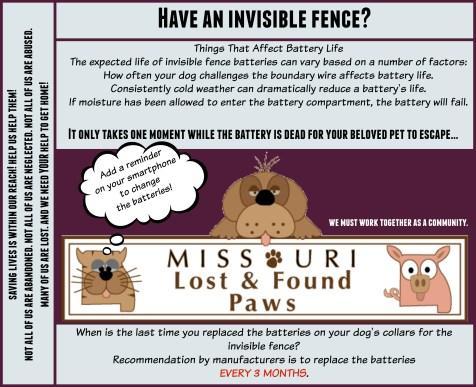 InvisibleFenceCollarBatteries2015 (1).jpg