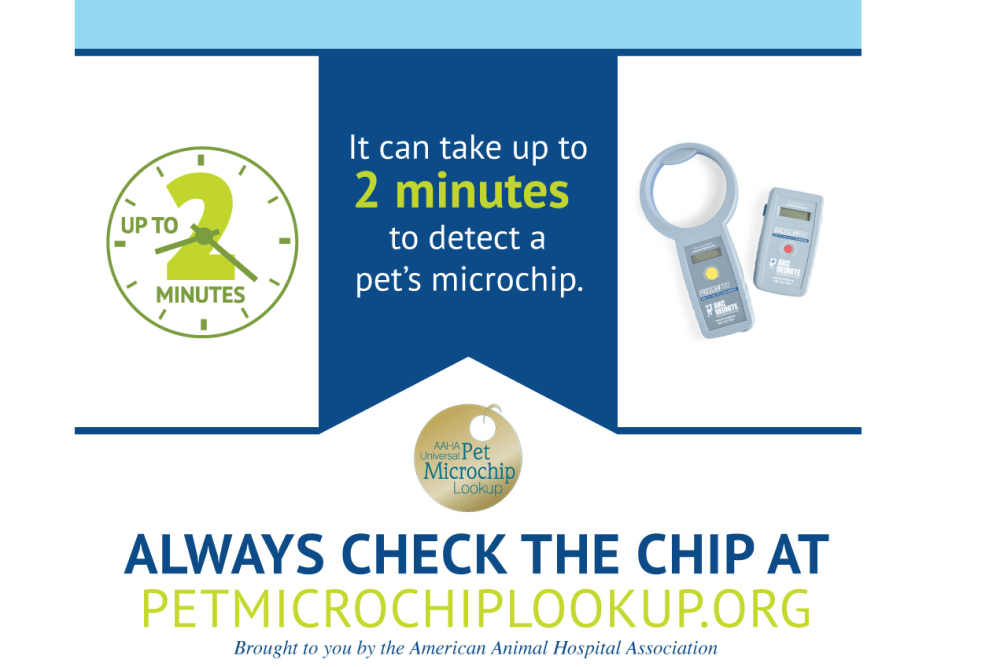 How to Scan for a Microchip - AKC Reunite.clipular (1).png