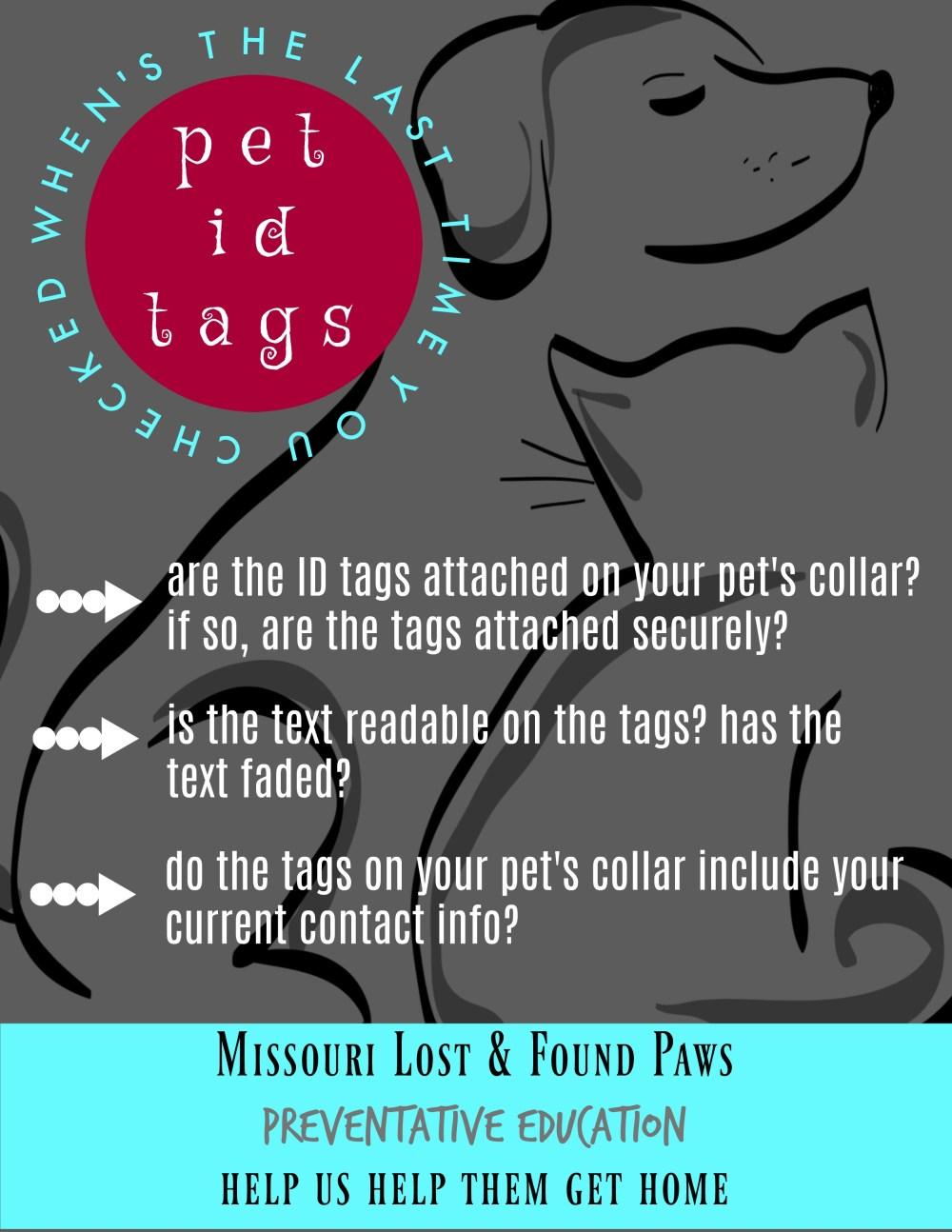 pet id tags check