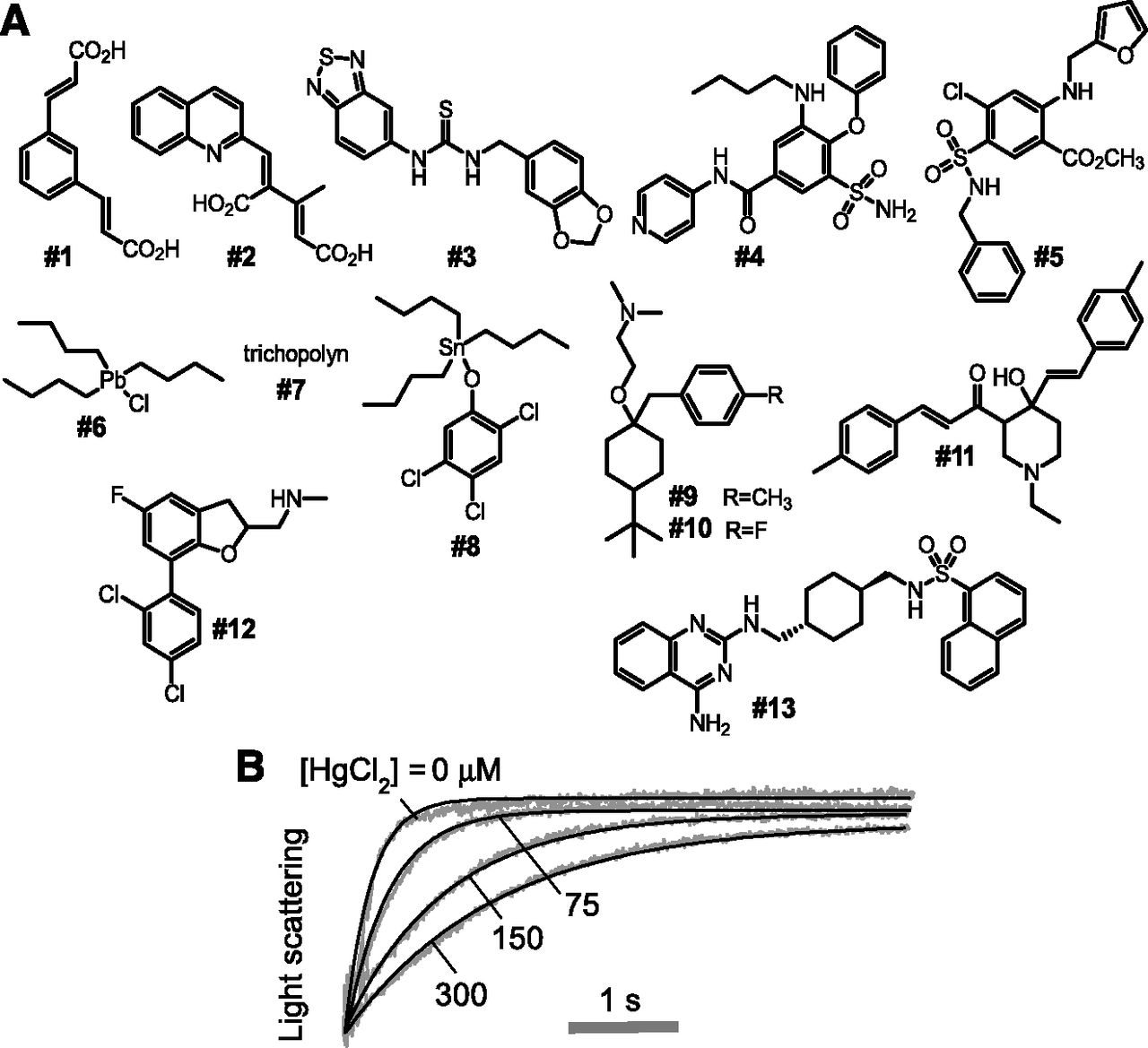 Experimental Evaluation Of Proposed Small Molecule Inhibitors Of Water Channel Aquaporin 1