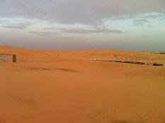 On a desert safari
