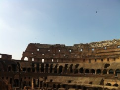 Birds flying over the Colosseum