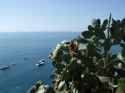I miss the sea views! This one from Cinque Terre