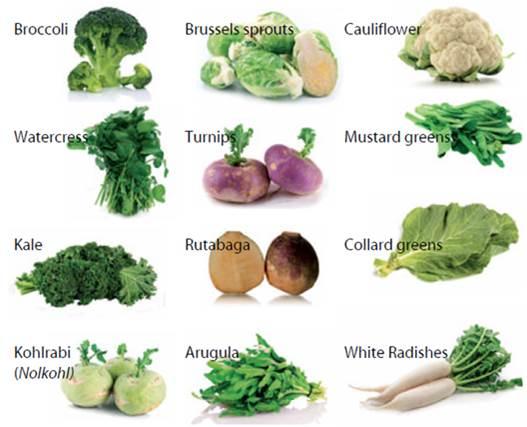 Resultado de imagen para the cruciferous vegetable family