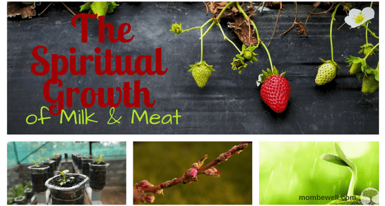 The Spiritual Growth of Milk & Meat