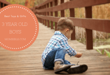 Best Toys & Gifts For 3 Year Old Boys