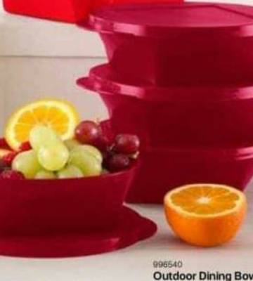 Tupperware Outdoor Dining Bowls (600 ml x 4)