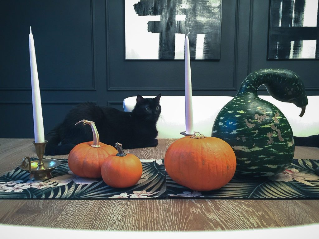 How To Dry Out Gourds