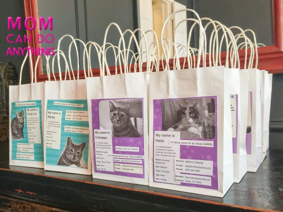 Great Idea for Kids Birthday Party Gift Bags 2-2