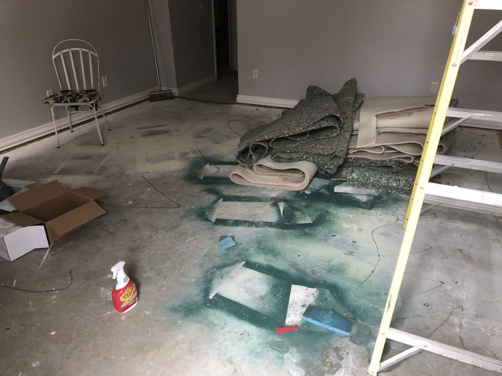 How to rip out your carpet and paint your concrete floor
