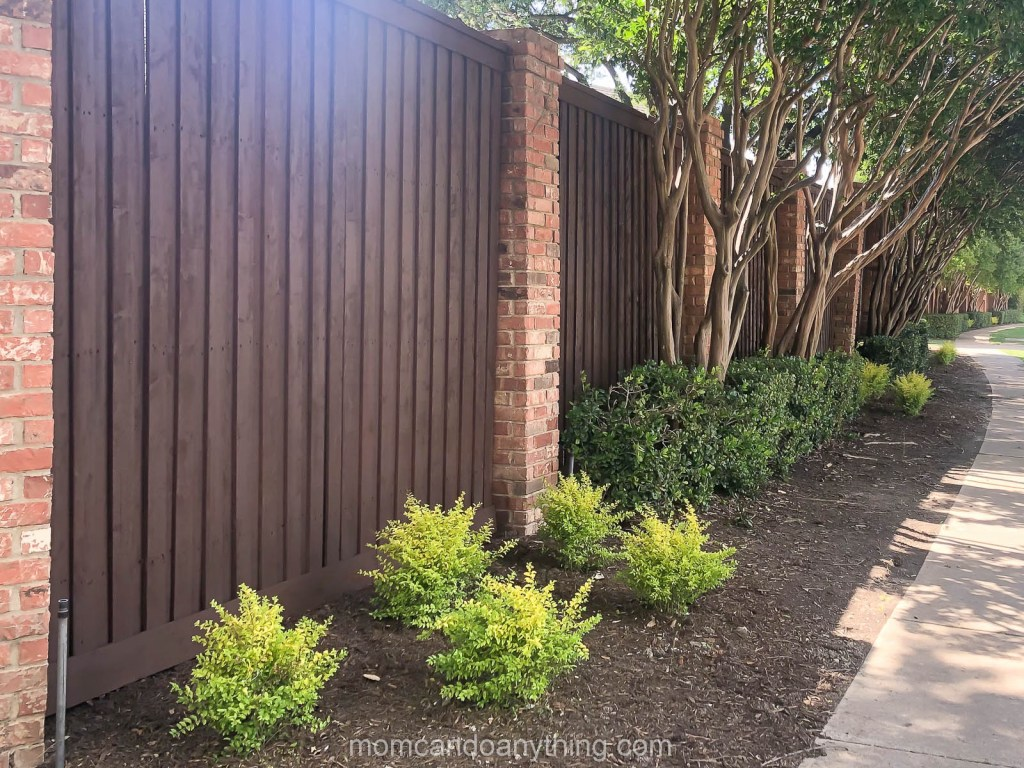 Backyard Makeover Fence